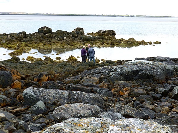 The Great Seaweed Hunt - Uist