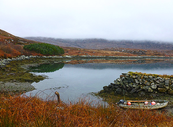 Winter Thrushes Survey, Locheynort. Beinn Mhor had it's head in the mist.